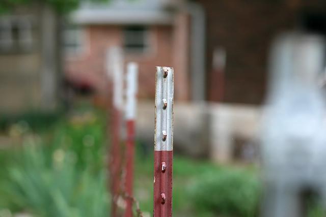 Fence Post, f/2.8