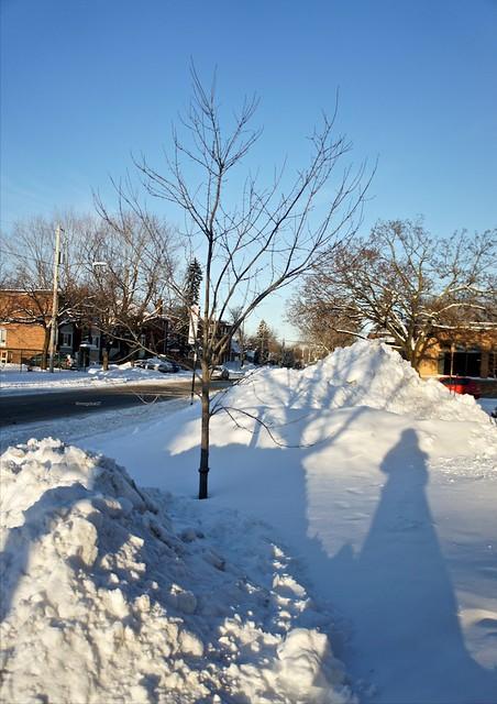 anteketborka.blogspot.com,  neige