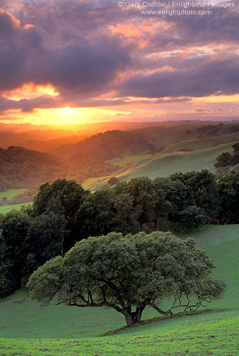 Briones Sunset