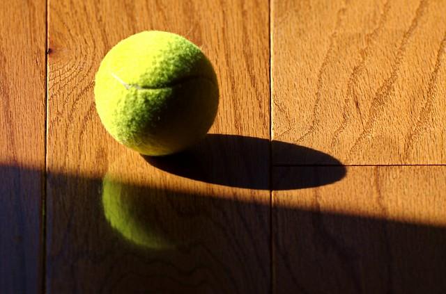 tennis ball on a hardwood floor
