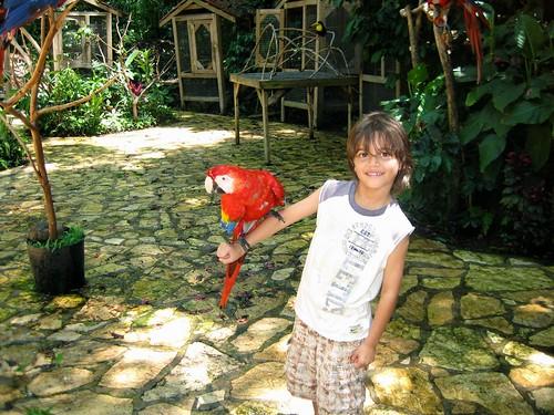 information about honduras