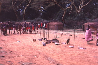 Maasai spears and shields, Kenya