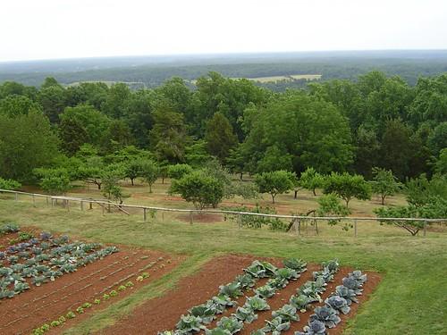 Monticello 2006