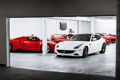 FF & Ferrari Big 5