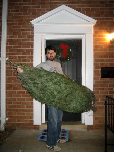Got the tree home!