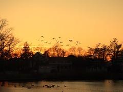 Silver Lake - Winter - Sunset (52)