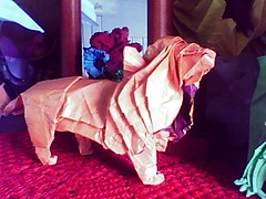Leão Satoshi Paper Lion 9 Photos 699