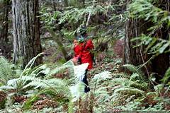 sasquatch? yeti? rachel & sequoia    MG 8026