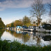 Small photo of New Haw Lock, Addlestone