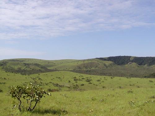 park river sand riviere sable national parc savanna gabon passa bateke plateaux groopy batekekingdom mpassa hautogouee