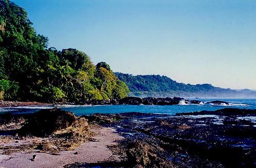 blue trees sea vacation latinamerica nature sunrise coast costarica rocks 1999 pacificocean montezuma soe centralamerica blueribbonwinner abigfave windydear