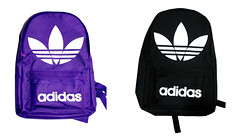 clothing(0.0), hoodie(0.0), outerwear(0.0), car seat(0.0), bag(1.0), purple(1.0), font(1.0), brand(1.0), backpack(1.0),