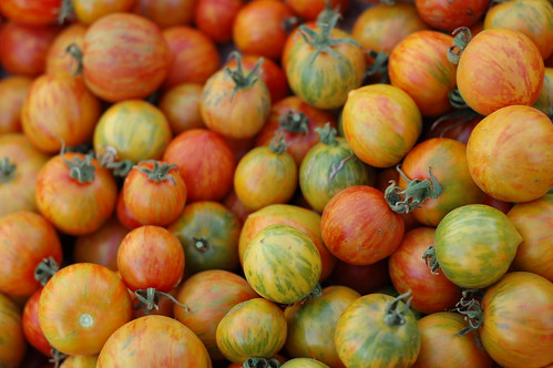Tomatoes, dry farmed by Eve Fox, the Garden of Eating, copyright 2007