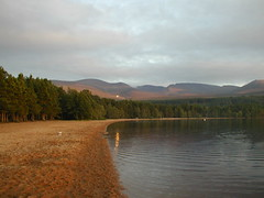 Sun reflecting onto Loch Morlich
