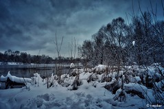 Winter Overcast