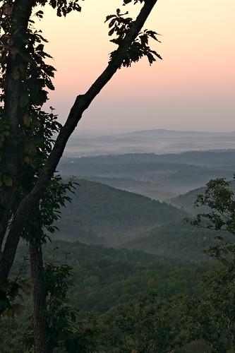 trees mist mountains dylan forest sunrise georgia dawn nikon valley bobdylan 1755mmf28g northgeorgia ellijay walnutridge d80 onemorecupofcoffeevalleybelow