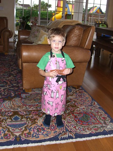 Why Did Grandma buy me this Apron?