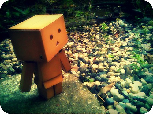 Danbo enjoys a slice of nature..