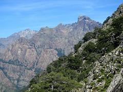Bocca d'Astenica : la Grande Barrière avec Punta Minuta, Scaffone, Punta Rossa, Paglia Orba