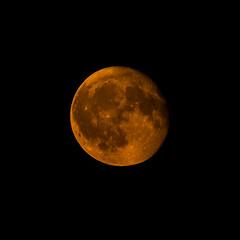 Big Moon in Natural Color