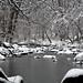 Snowy Little Patuxent River