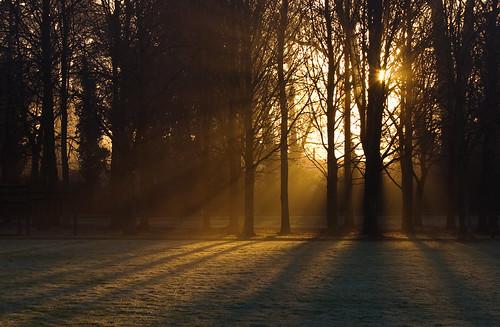 uk morning light shadow england mist 20d fog sunrise frost hampshire rays hursley eos20d canon70300f4556do ef70300mmf4556isusmdo