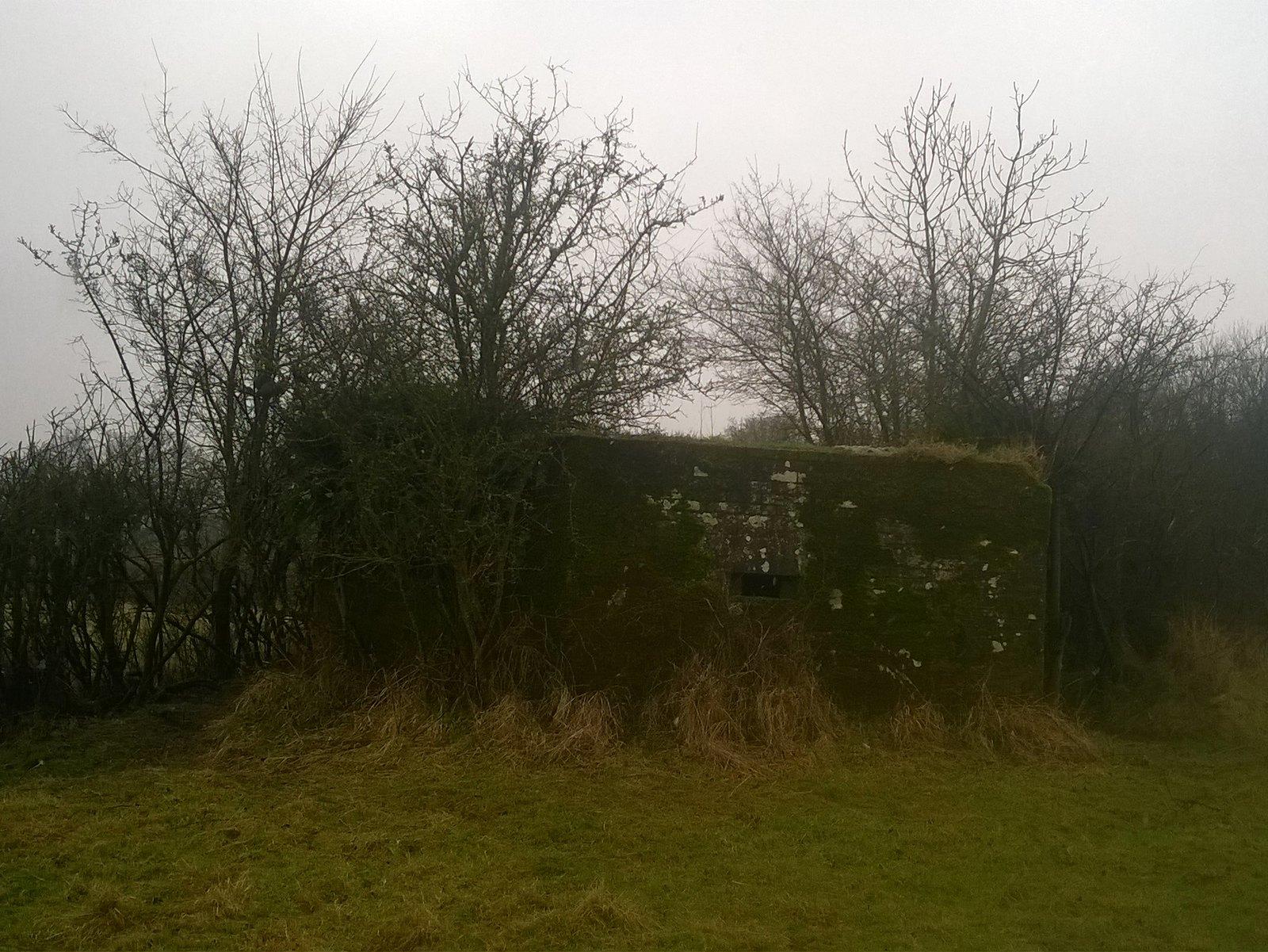 Overgrown pillbox near Buxted