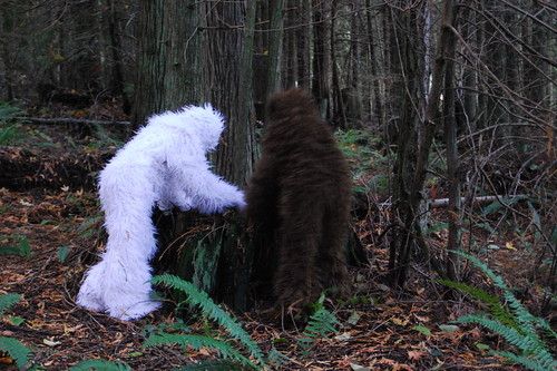 Sasquatch and Albino Sasquatch