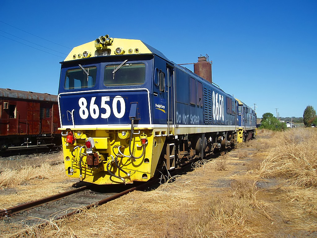 8650 at Werris Creek by Flying Donkey