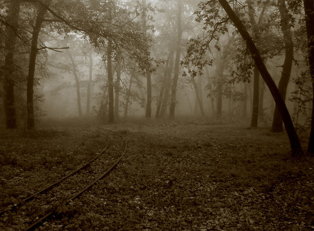 Forgotten path / Camino olvidado