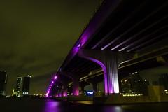 Causeway by night