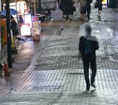 Shibuya, Rain