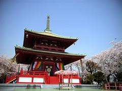 孝道山仏舎利殿