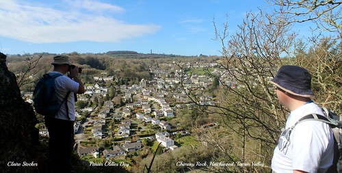 Chimney Rock, Hatchwood, Tamar Valley by www.stockerimages.blogspot.co.uk