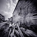 Old Barn, a 4x5 Film Pinhole Photograph by integrity_of_light