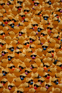 Rubber ducks exposed  /1