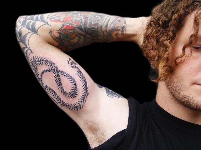 Snake Skeleton Tattoo Cobra Skeleton Tattoo