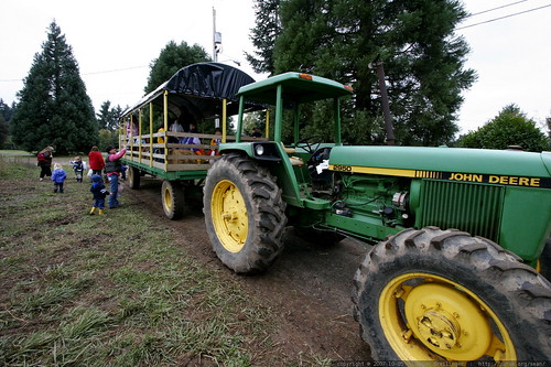 hayride tractor and wagon    MG 4433