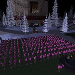 army of flamingos