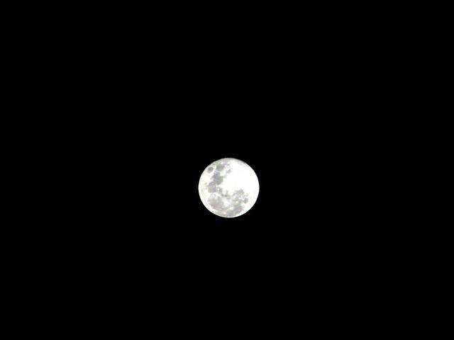 bulan mengambang   Flickr - Photo Sharing!