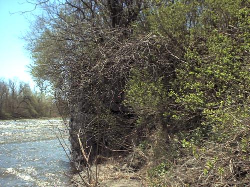 railroad abandoned shne sackettsharborny ellisburgny