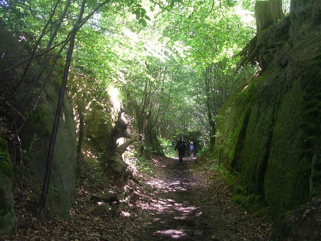 Through a cliffy bit Hever to Leigh