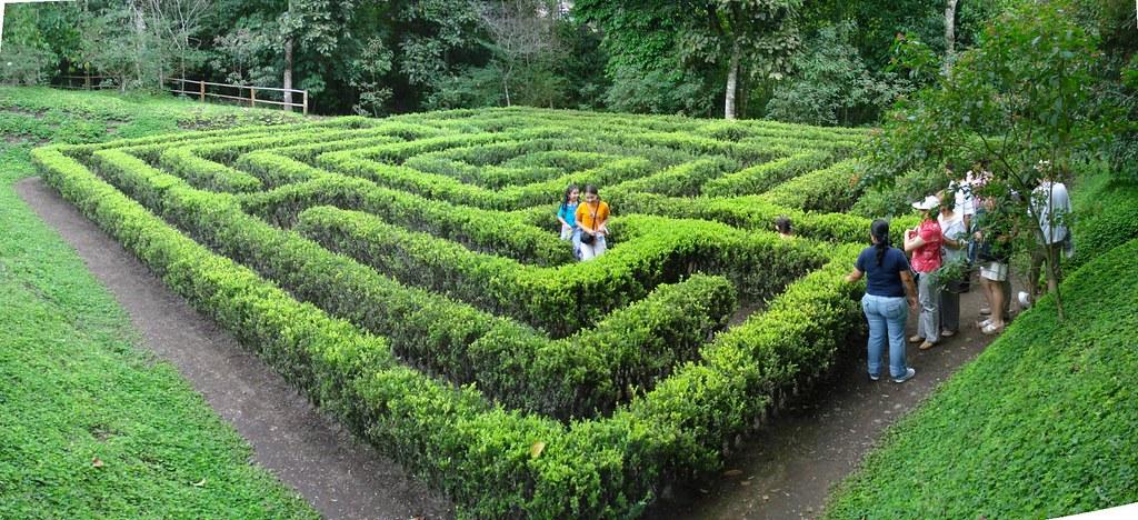 Imagen del Laberinto en el Jardín Botánico del Quindio