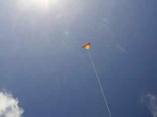 Phoenix in the sky