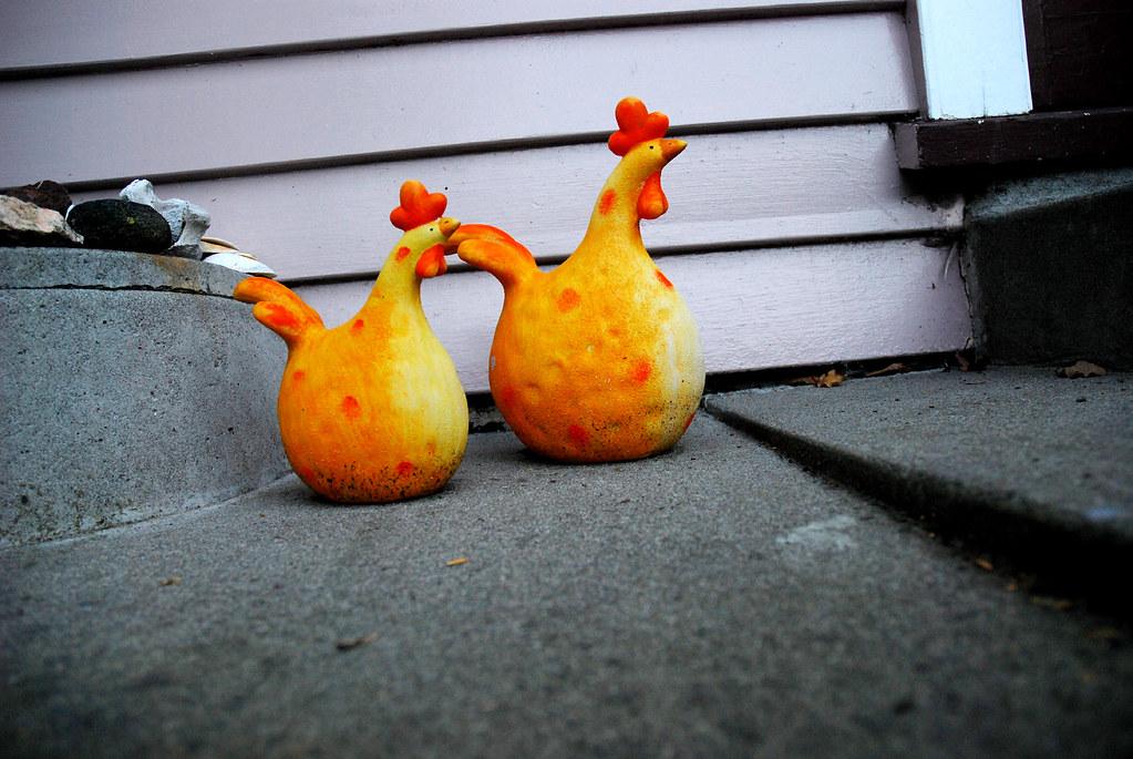 Chicken licken!