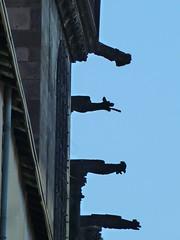 Gargoyles in Rue Saint-Louis, Riom, Auvergne_ - Photo of Chappes