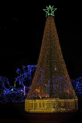 lights downtown ky christmastree louisville lightup