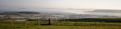 Mist in the Blackmore Vale