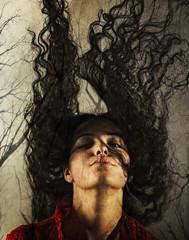 hair branches