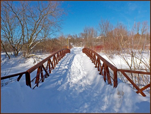 Snowy Foot Bridge